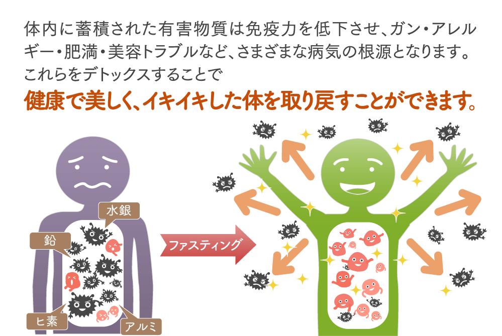 体内に蓄積された有害物質(環境ホルモン、農薬、食品添加物など)、有害ミネラルは 免疫力を低下させる・ガンなどの大病を招く・アレルギー・肥満・美容トラブルなど、さまざまな病気の根源となります。 これらの有害ミネラルをデトックスすることで細胞が元気になり免疫力も上がり、 健康な体はもちろんの事美しくイキイキした体を取り戻すことがでます。
